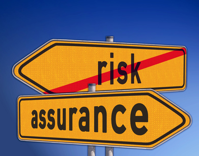 directorys risk and assurance